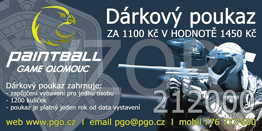 DP-1100-web